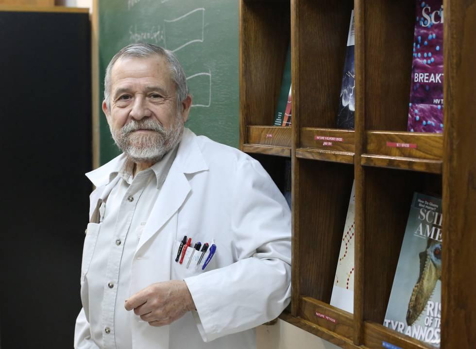 maestros de méxico