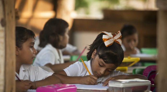 EDUCACIÓN DEBE FORMAR CIUDADANOS, NO EMPLEADOS