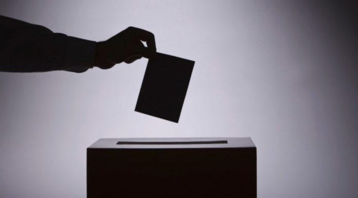 DEMOCRACIA SINDICAL